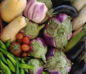 ירקות קיץ